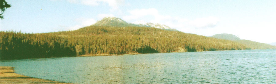 Contact The Narrows - Wilderness Cabins on Takla Lake